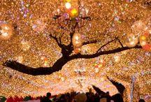 * Glitter ☆ Light *