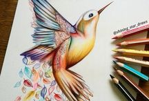 colour pencil drawing