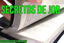 Secretos Del Libro De Job