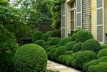 trädgårdsideer