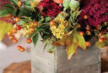 Autumn Wedding / by Caroline Watts