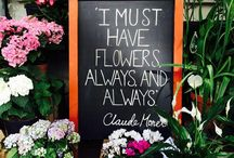 Gardening Quotes / What do you love about gardening? Why is it special? We've collected some of the best, most famous and nicest quotes about gardening from across the web!