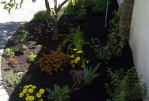 Yards | Planter Beds | Landscaping | Gardening / Prunin has over 18 years of experience with landscaping, design, installation, irrigation, soil amendment, tree trimming and more!  Certified Arborist on staff.  Contact us at: 714-236-9887