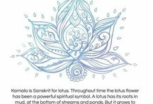 {Love} Lotus