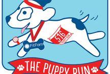 The Puppy Run 2016