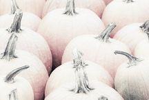 Holiday: Autumn Gratitude