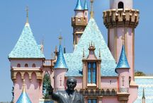 USA Hotels for Families of 7 and 8 / 0
