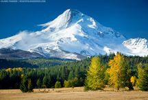 My Oregon ........ My Portland / by Donna Moore