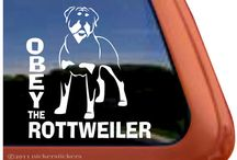 Obey the Rottweiler