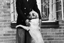 True revolutionaries love dogs