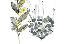 Illustrations végétales