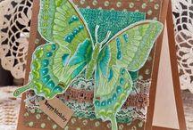 Cards / by Malia Murray