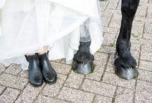 bruiloft debbie
