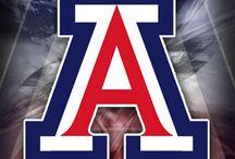 UA Wildcats