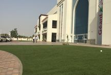 Artificial grass in public areas