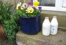 Then and now / Images from Tasker Dunham's Yorkshire Memories - a memoir blog: www.taskerdunham.blogspot.com
