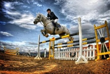 Awards / Horse riding