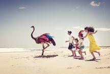 Campagne Printemps-Eté 2016 / Cette saison, Catimini invite à l'évasion au grand air. Au programme : rencontres insolites et jeux de plage aux mille et une couleurs !  Catimini nous révèle une recette poétique et raffinée : des silhouettes vitaminées, des teintes nouvelles et gaies, des imprimés à croquer, des matières nobles et chinées, ... le grand mix dont Catimini a le secret !