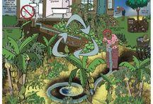 Permacultura / Permacultura