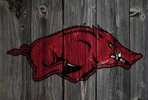 Arkansas Razorbacks / by Carol Denham