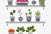 Bad plants to have with cats