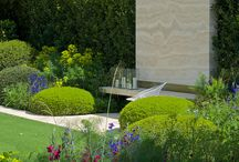 Garden: Chelsea Flower Show / by Laara Copley-Smith Garden Design