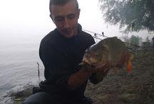 Fishing on Danube / Fishing around Danube Delta , catfish and carp.