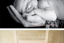 Newborn Photography / by Wendi Sylvester