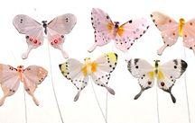 Butterflies / by Jeanna Shealy