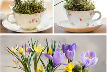 Easter Decorations / Decorate your home or shop with these tasteful decorating ideas