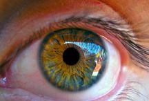 Author Blog / Blogs I write at zacharybohannon.com