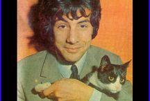 Famosos y Gatos