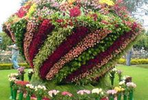 GLORIOUS GARDENS / Beautiful inspiration for flower beds. / by Juli Griffith