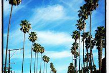 California road trip / by Ruth Malcolm