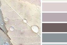 Home Ideas: Color
