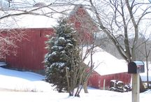 Midwest barns