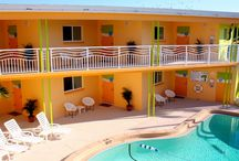 Clearwater Accommodations / Clearwater Florida is a superb destination for any occasion, and with such a wide variety of accommodations available, caters to all!