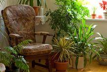 HOME SWEET HOME / ispirazioni per rendere sempre più bella casa mia
