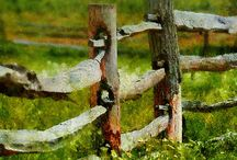 Old fences
