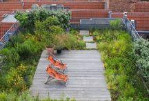 憧れの屋上ガーデン
