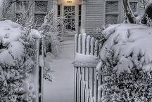 A vida no branco da neve. / Talvez um sonho ainda a realizar...neve...