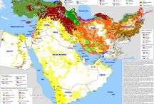 Middle Eastern Ethnic Groups
