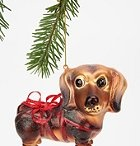 Dachshunds!! / by Meredith Scibilia