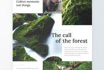 lasypanstwoweprojekt