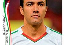 Brésil 2014 Iran