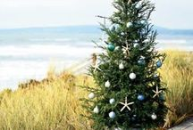 Coaststyle Christmas / Would love to do the holidays at the beach / by Alle Knight