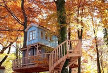 treehouses to live in