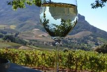 Stellenbosch / #stellenbosch is #paradise on earth, we as Go placements show you some amazing spots in this lovely village surrounded by vineyards. https://www.go-placements.com to see all our adventures