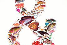 Fish ill