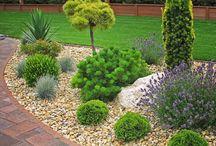 Kert-Garden